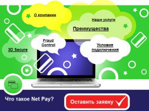 http://net2pay.ru/