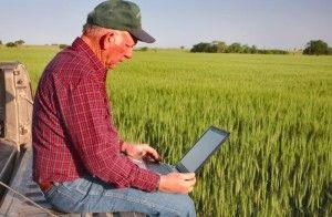 robotul-de-pe-internet-care-te-ajuta-sa-iei-bani-europeni-pentru-agricultura-8450