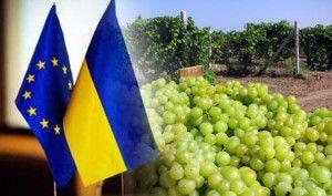 виноделие в Украине