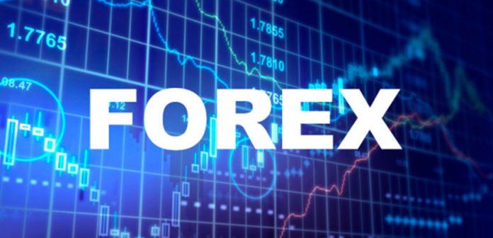 инвестировать в форекс не торгуя